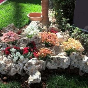 Rocce da giardino anticate della murgia cioffi pietreditrani - Rocce per giardino ...